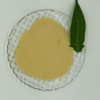 China 2-AMINOTHIAZOLE HYDROCHLORIDE CAS: 6142-05-8 Off white to yellowish powder for sale