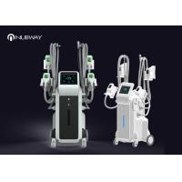 User Friendly Cryolipolysis Slimming Machine Weight Loss Equipment No Need for sale