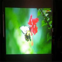 Quality Gray Rear Projection Film / 3D Holo Display With Self Adhesive Layer 100 Thickness wholesale