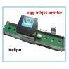 Expiry Date Egg Stamping Equipment, Electronic Inkjet Coding MachineFor Eggs