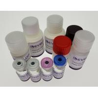 Best Human SH3 Domain-Binding Glutamic Acid-Rich-Like Protein 3(SH3L3) ELISA Kit wholesale