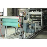 Best Single Layer Multilayer Sheet Co Extrusion Line High Intensity Temperature Resistant wholesale