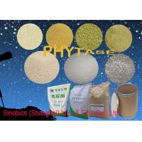 China Animal Universal Nutrition Supplements Enzyme Phytase Granular Feed Grade Szym-PHY10GH on sale