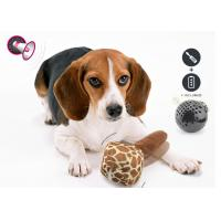 Best Crazy Bouncer Motion Activated Dog Toys 20 - 25cm Length For Exercise wholesale