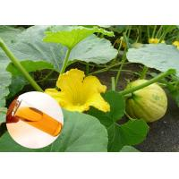 Best Prevent Prostate Natural Dietary Supplements Organic Pumpkin Seed Oil Food Grade wholesale