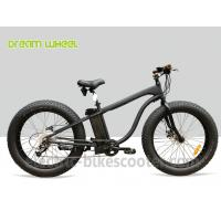 Best 26 x 4.9 Fat Tire Electric Beach Snow Cruiser Bicycle 48V 750W Rear Gear Motor wholesale