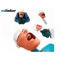 Best Dental Simulator Dental Chair Unit Detnal Teaching Model Training Simulator Head with Belt wholesale