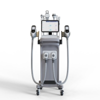 -15-5℃ Temperature Weight Loss 1800w Cryolipolysis Slimming Machine for sale