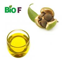 Best Pure Camellia Japonica Oil  For Skin Care Food Grade AndCosmetics Grade wholesale