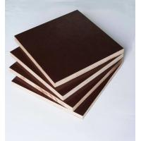 Best Film Faced Poplar Plywood For Cabinets , Decorative Plywood Sheets Anti Wear wholesale