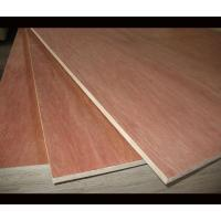 Best Poplar Core Melamine Covered Plywood 2 Time Hot Press Technics Quick Delivery wholesale