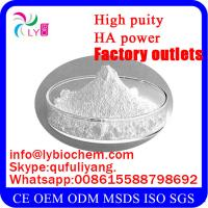 Best Food Grade Hyaluronic Acid Powder CAS 9004-61-9 wholesale