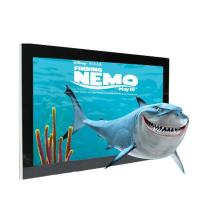 Best Full HD 1080P Glasses Free 3d Display , High Resolution 48 Inch Glassless 3d Monitor wholesale