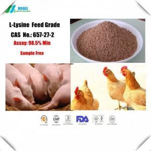 Best Lysine CAS 657-27-2  Feed Grade Amino Acid for animal nutrition Free sample wholesale