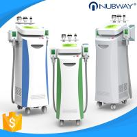 Cheap 5 handles Vacuum+Cryo, Cavitation and RF multifunctional Cryolipolysis slimming machine for sale