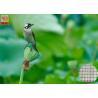 Best Garden Plastic Bird Netting UV Stabilised , Square Plastic Bird Mesh Black Color wholesale