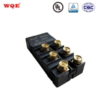 China WL09L-F-324dB 60A/80A 24V Normally Closed Electric Magnetic Latching Relays Rele for sale