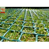 Best Grass Protection Mesh , Garden Mesh Netting , Turf Reinforcement Mesh , 650 GSM , HDPE Materials wholesale