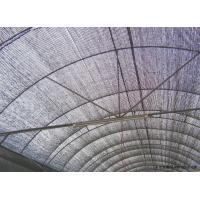 Quality Black Color Large Size Black Sun Shade Net Anti Bird With High Shade Rate 2*4m 60g/m2 Shate rate 70-75% wholesale