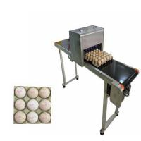 Best Egg Printing Machine For Spherical / Egg Jet Printer Machine Low Cost Of Consumption wholesale