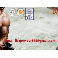 Quality High Purity Pharmaceutical Oral Steroids Testosterone Undecanoate Hormone Powders wholesale