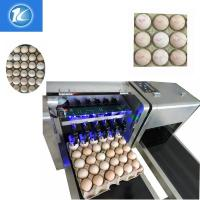 Best 1600x410x980mm Size Egg Jet Printer Machine With Low Maintenance Costs wholesale