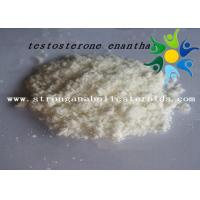 Best Raw Test E Powder Testosterone Anabolic Steroid Testosterone Enanthate CAS 315-37-7 wholesale