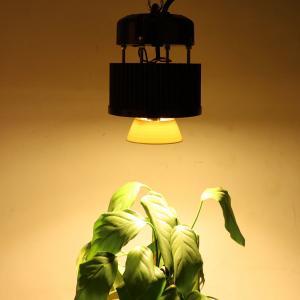 Cob Led Grow Light From Wholesaler Ledgrowlighting