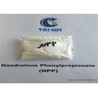 CAS 62-90-8 Raw Steroid Powders Nandrolone Phenylpropionate NPP Durabolin Cutting Cycle