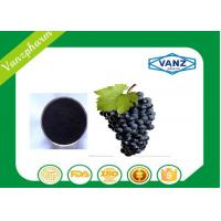 Quality Pure Herbal Extracts HPLC  95% OPC grape seed extract for Antioxidant wholesale