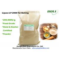 China Food Grade Lipase Enzyme For Baking , Robust Activity Bread Enzymes Stable Activity on sale