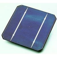 China Durable 5W To 250W Monocrystalline Silicon Solar Cells With Cheap Price on sale