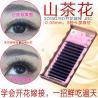 Best Light 3D Russian Volume Eyelash Extensions , 3D Semi Permanent Eyelashes wholesale