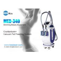 Best Innovative Cryolipolysis Freeze Fat Reduction Machine With 2 Handles Work Cryotherapy wholesale