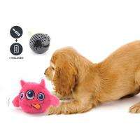 Best Non Toxic Dog Entertainment Toys , Indoor Plastic Material Pet Dog Toy wholesale