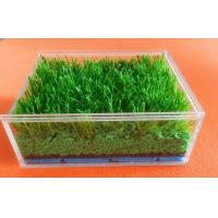 Best Customized Synthetic Grass Rubber Infill For Artificial Turf , SBR Rubber Granules wholesale