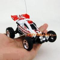 1:24 Scale RC Mini Car
