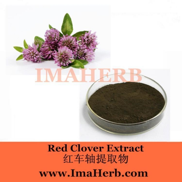 Cheap Red Clover Extract for sale