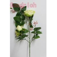 Quality GR-2010 high quality chinese rose wholesale