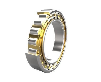 China Cylindrical Roller Bearings RN RNU Series (d 17-400mm)